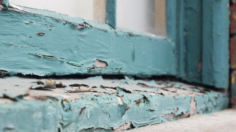 How to: Remove Mould and Lead Paint Safety and Painlessly